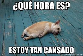 Que Hora Es Estoy Tan Cansado Tired Dog Meme Generator Bulldog French Bulldog French Bulldog Names