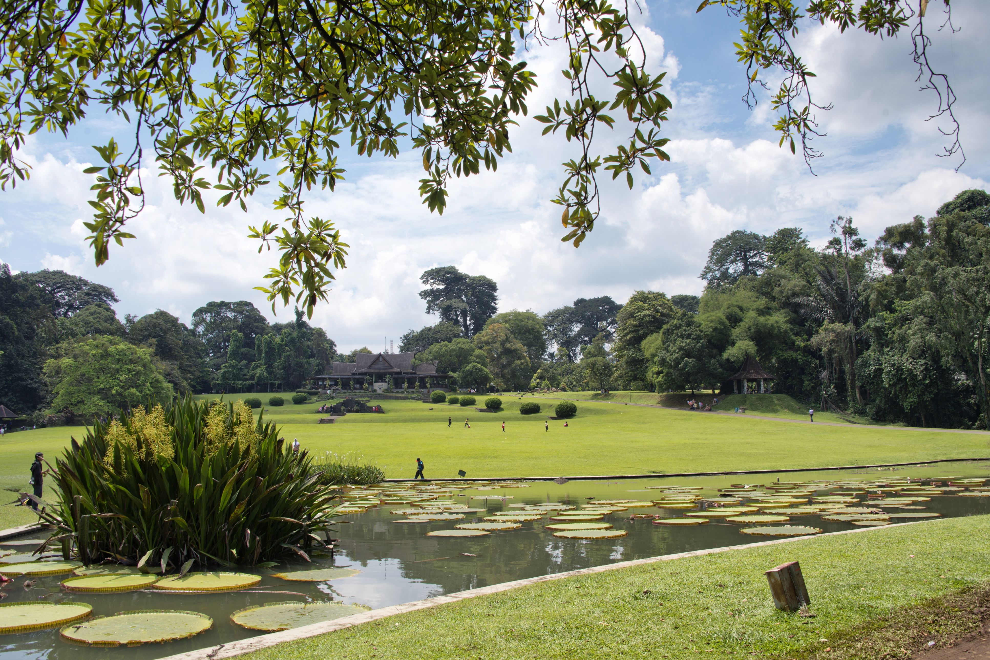 Around the World in 50 Amazing Gardens Gardens of the
