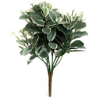 This Artificial Pittisporum Plant with its variegated leaf foliage is as realistic as the real thing.  The Pittisporum Plant is 36cm tall (including 22cm of foliage).