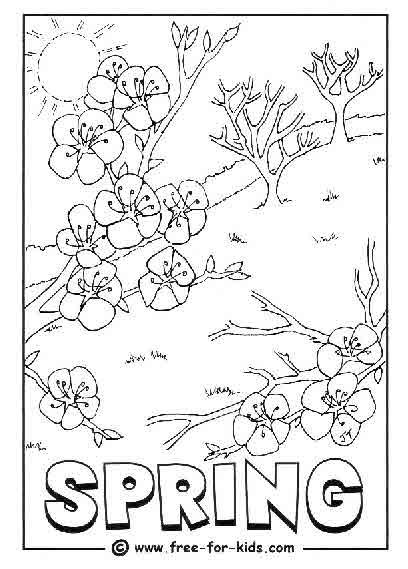 8 different Coloring pages of Spring time | Spring ...