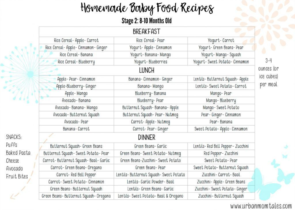 Homemade Baby Food Recipes, 1 Month of Baby Food, 60 Recipes of Stage 2  Baby Food