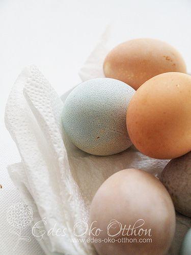 Pasztell tojásfesték öko módon