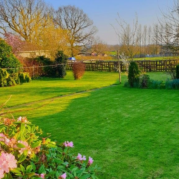 Lawn Mowing Chesterfield Derbyshire Paramount Lawns And