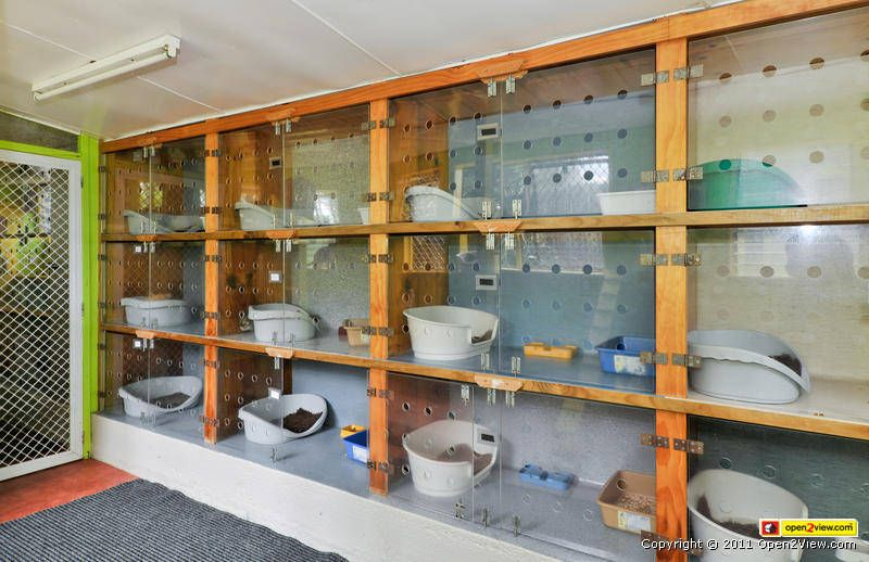 Cattery Bimlers Kennel & Cattery Cat kennel, Cat hotel