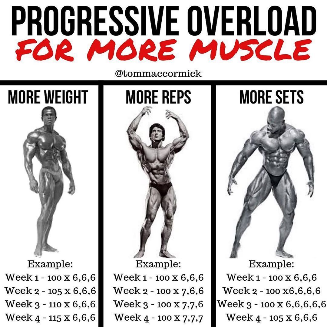 Progressive Overload Is the Concept You Must Understand to Make Consistent Gains in the Weight Room