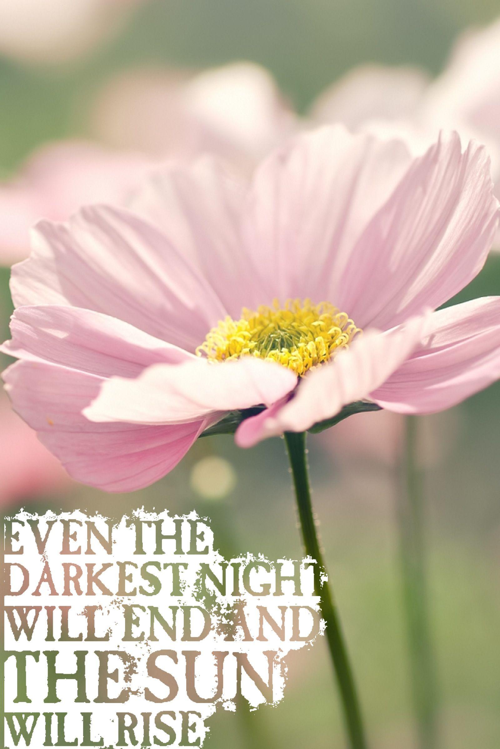 Pink Flower Quote Lesmiserables Mantra Flourish Pinterest