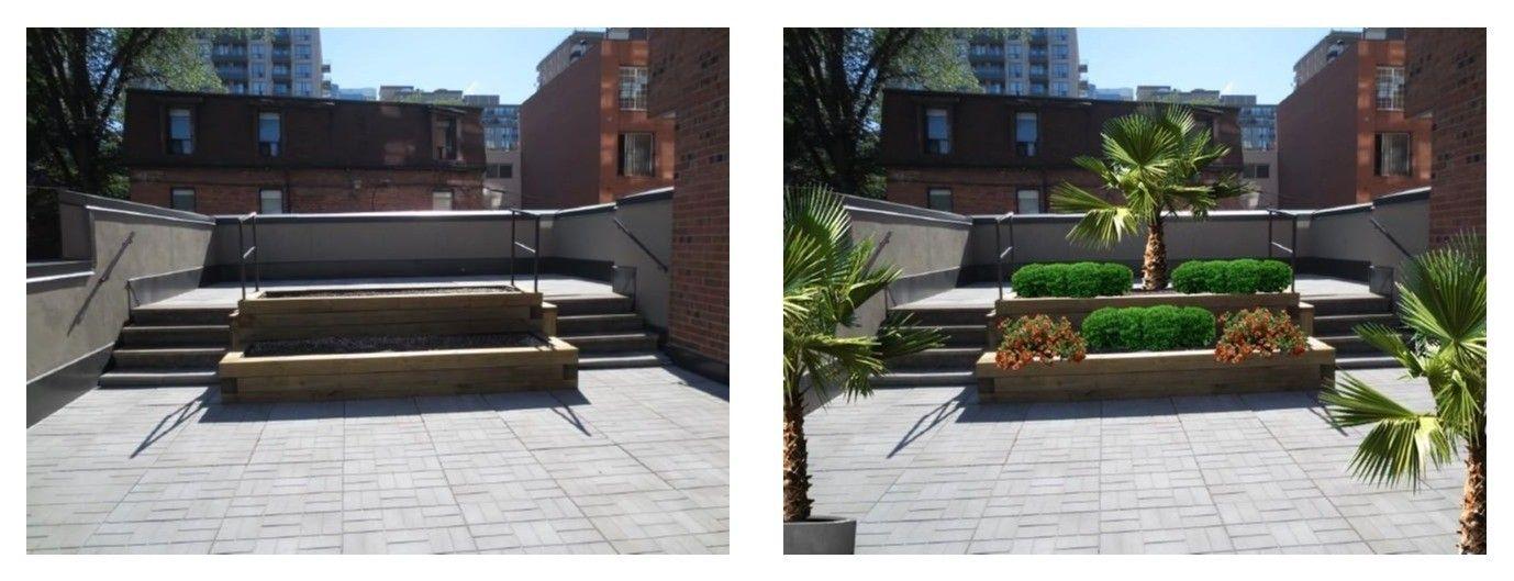 visual landscape design before and after | Landscape ...