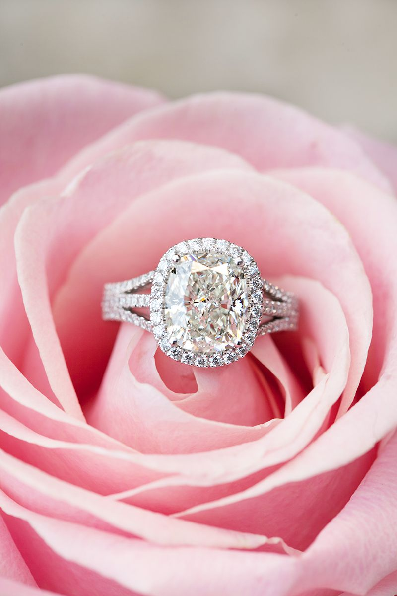 Engagement Rings and Flowers: 15 Perfect Shots | Split shank ...