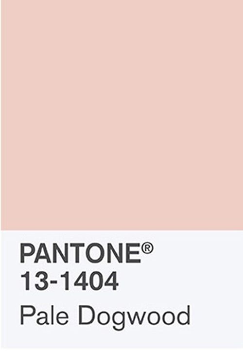Photo of What's the Deal With Millennial Pink? • Little Gold Pixel