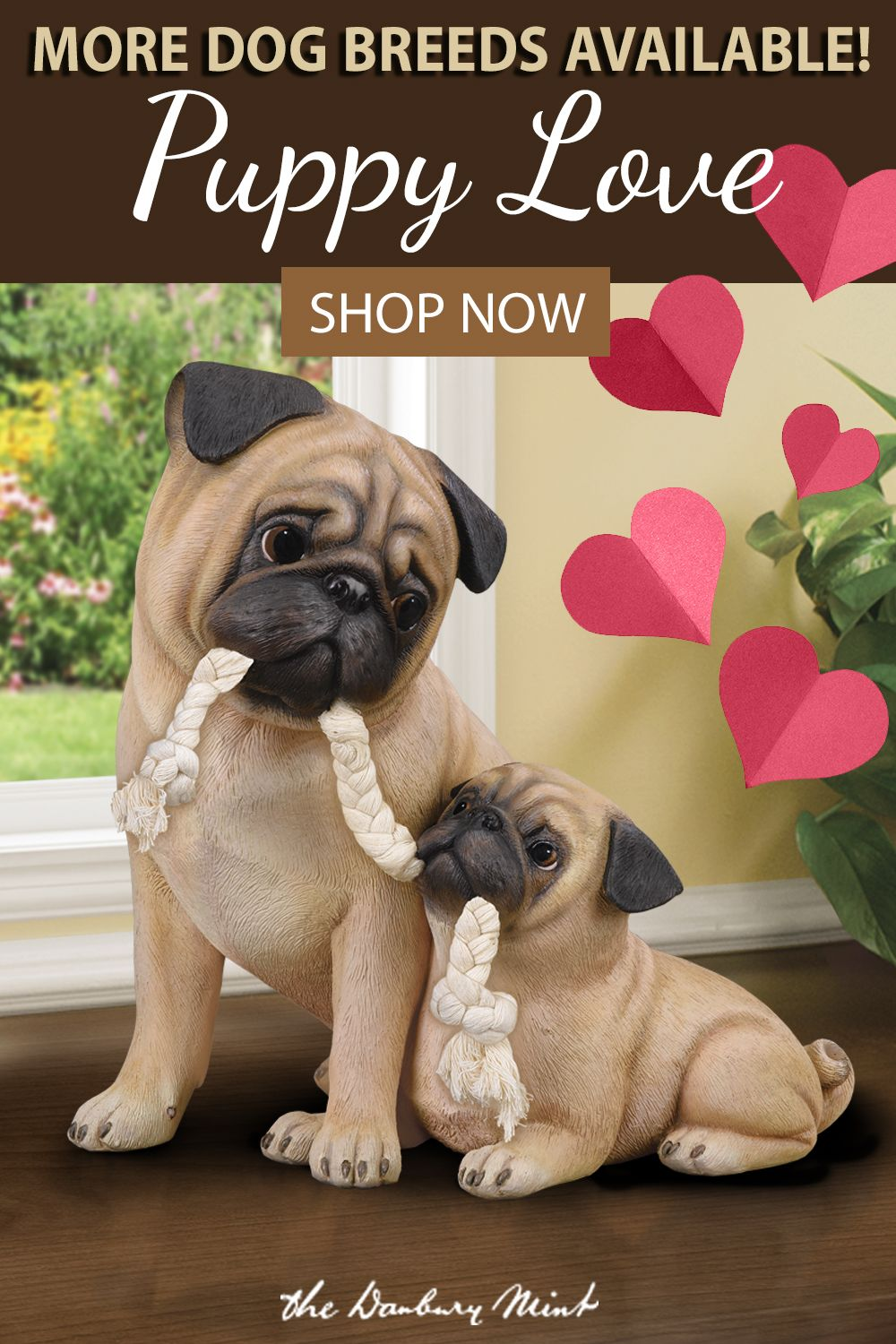 Puppy Love Pug Animals Really Cute Puppies Pug Puppies Dogs