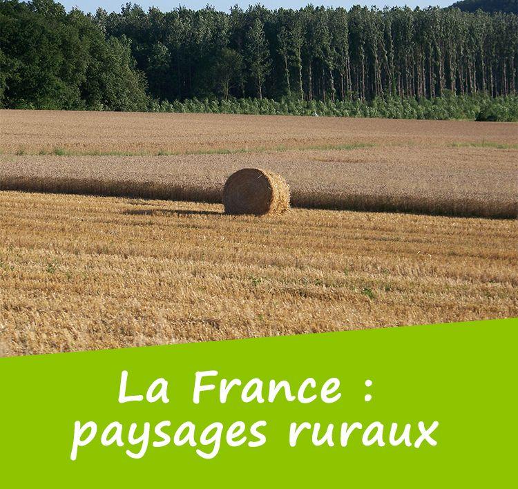 Reconna tre les paysages fran ais qu 39 est ce qu 39 un for Paysage francais