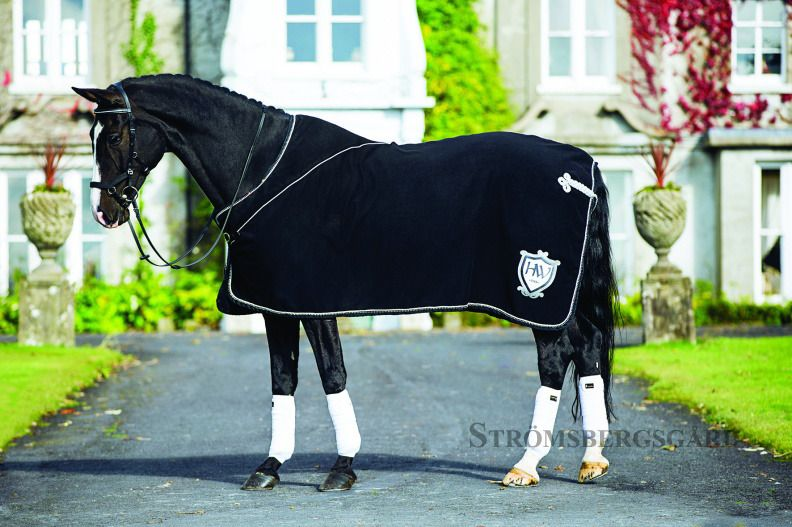 RAMBO DIAMANTÉ SHOW RUG | Horse, Hästar, Vackra hästar