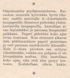 Suomessa onkin tapana varsinkin lapsiperheissä kylvää märälle talouspaperille johonkin astiaan rairuohon eli raiheinän siemeniä, joista muutamassa päivässä kasvaa vihreä oras http://neba.finlit.fi/tietopalvelu/juhlat/paasiainen/rairuoho.htm