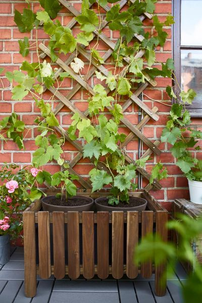 Ikea Balcon Meuble Pas Cher Jardiniere Design Jardins Urbains Jardiniere En Bois
