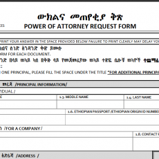 Power Of Attorney Form Ethiopian Embassy The History Of Power Of Attorney Form Ethiopian Emb Power Of Attorney Form Power Of Attorney Power