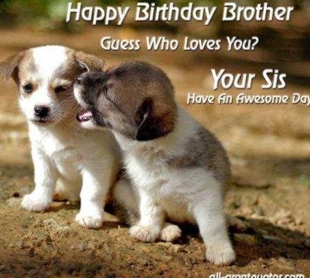 Brother birthday
