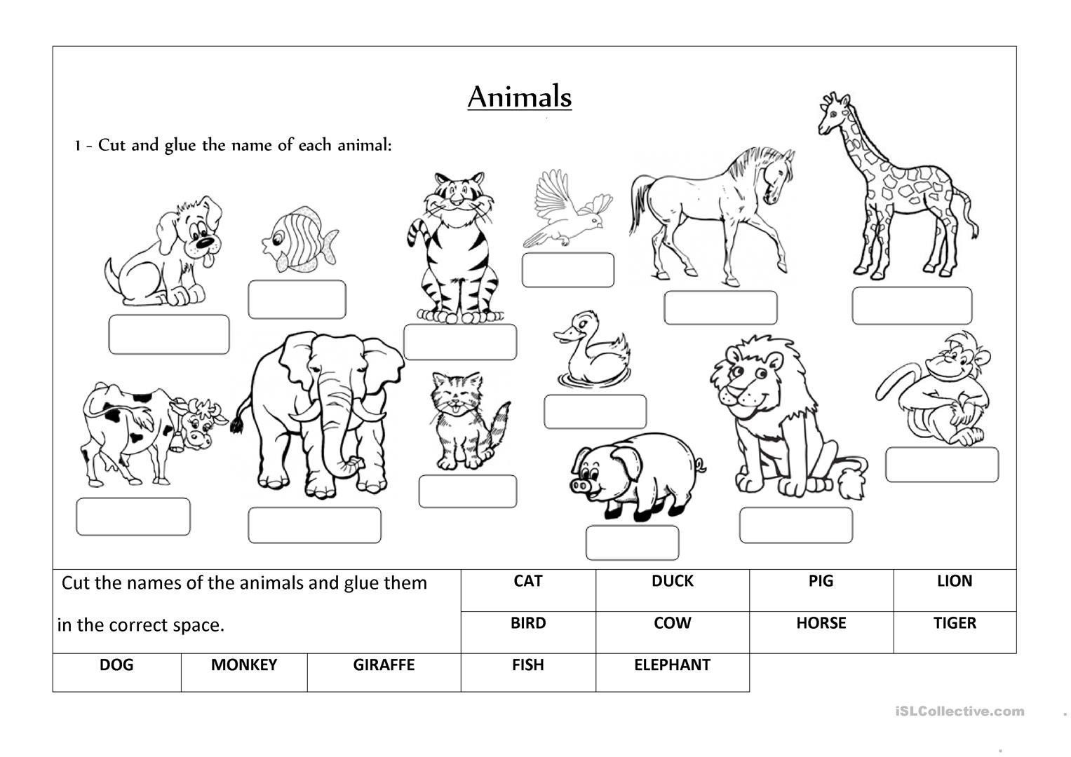 3 Wild Animals Worksheets For Preschool Animals Label And