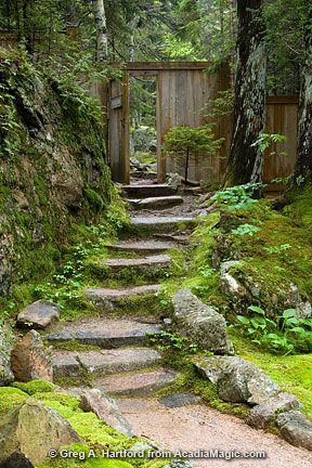 Gardens Of Stone National Park Walks