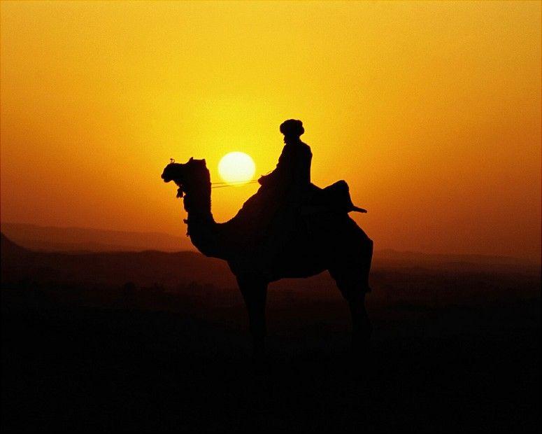 Ride a camel :)r