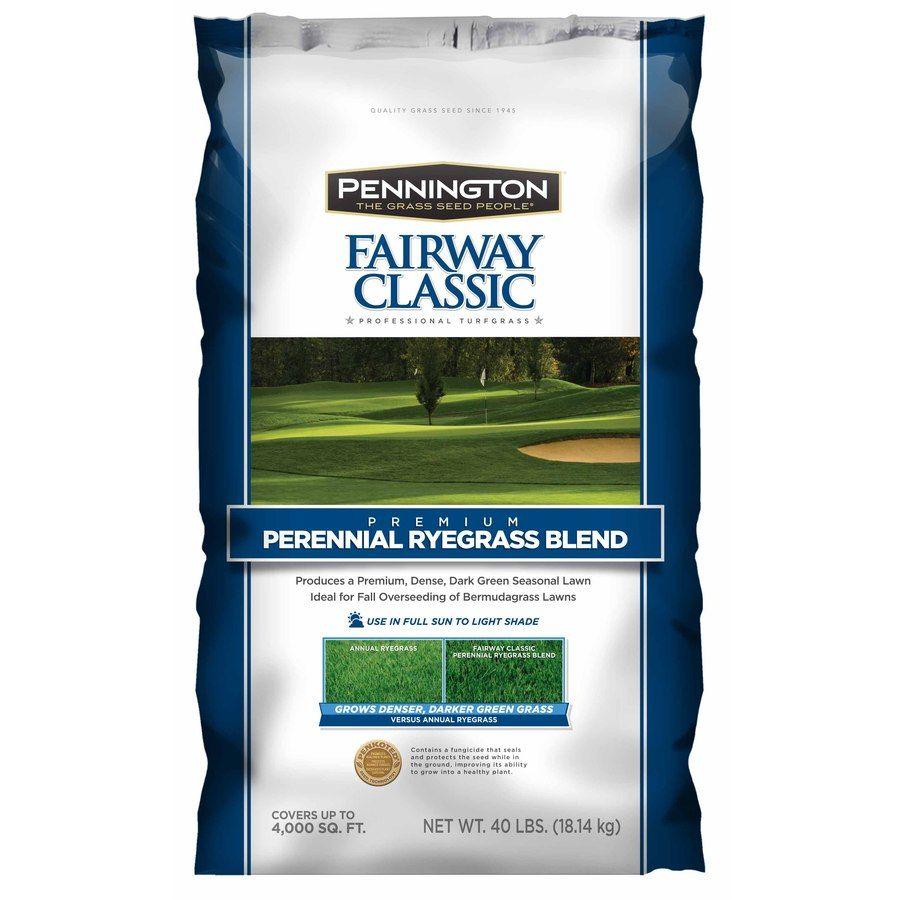 Pennington Fairway Classic 40 Lb Perennial Ryegrass Grass Seed