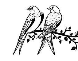 Resultado De Imagen Para Imagenes De Pajaros Para Imprimir Pajaros Para Colorear Dibujos De Pajaro Imagenes De Pajaro