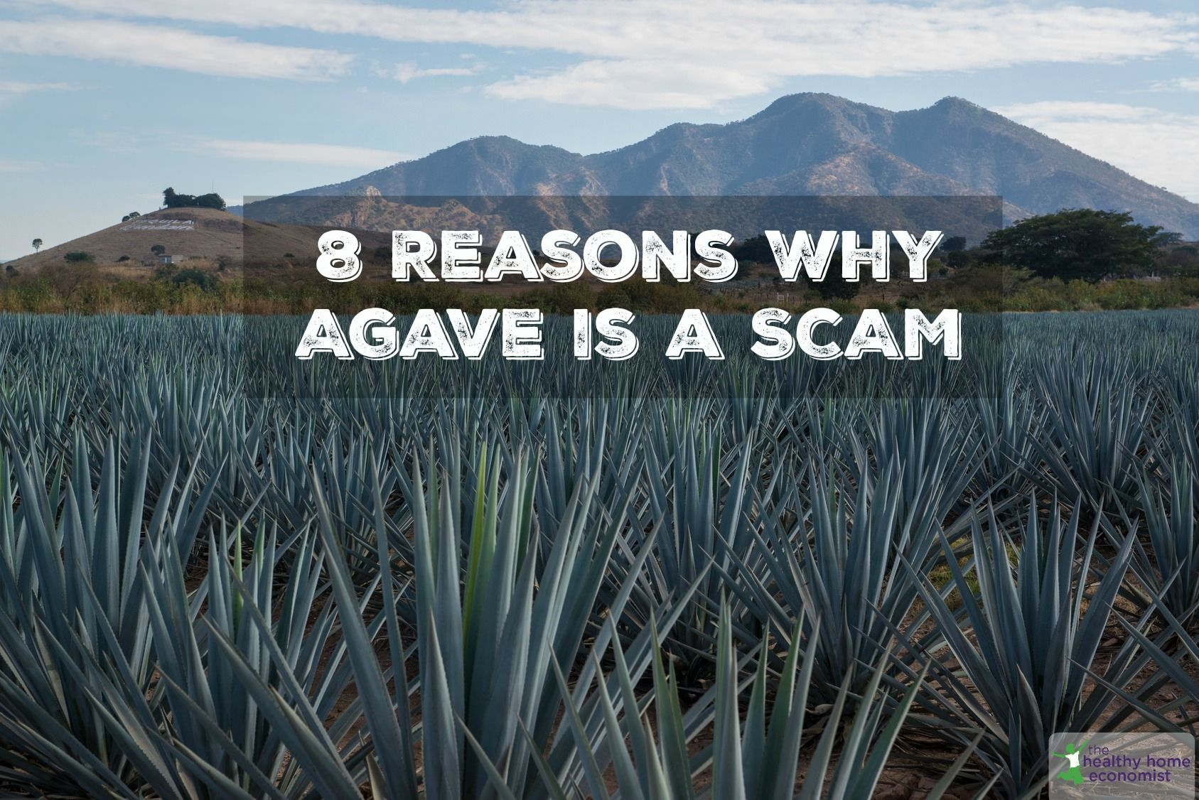 8 Reasons to Never Eat Agave
