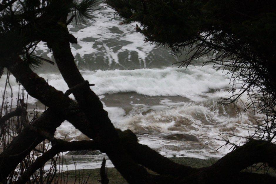 Seal Rock Area Oregon Coast Oregon Coast Oregon