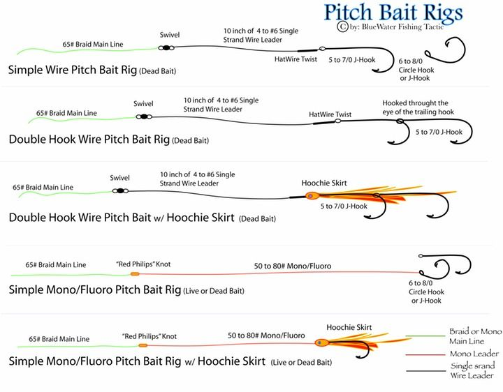 Pitch Bait Rigs  Kayak Fishing Nayarit Riviera Nayarit