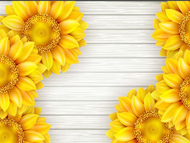 Beautiful Sunflowers With Wooden Background Vector 10