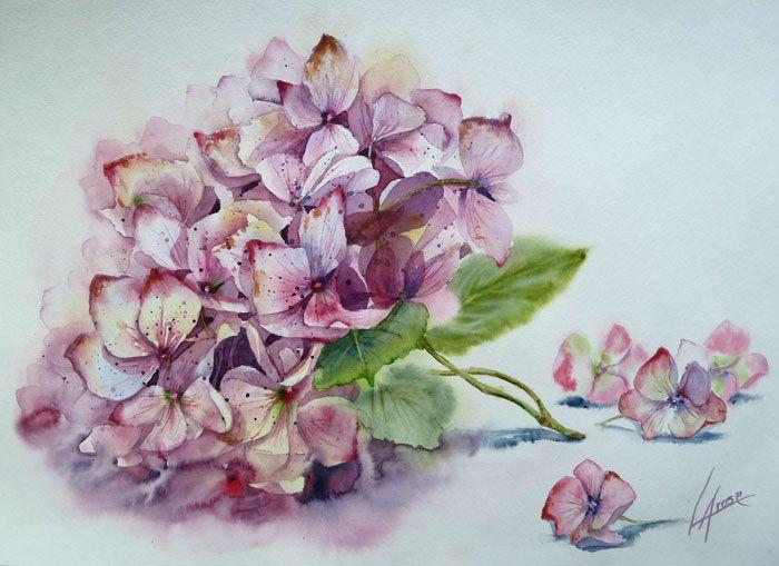 Hortensia Parme 30 X 40cm Aquarelle Fleurs Aquarelle Florale