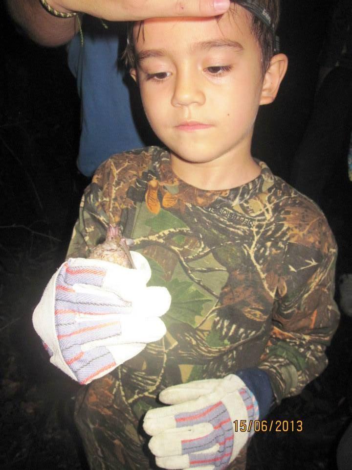 En clases de Zoología de la UNELLEZ, recibió práctica de colecta y marcaje de Murciélagos, con 7 años.