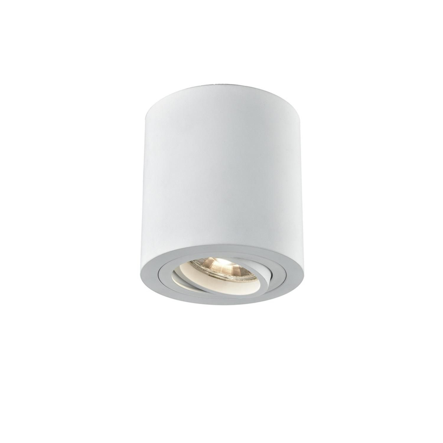 Dimmable Surface Mounted LED Ceiling Downlight Adajustable Spot Light Fixture