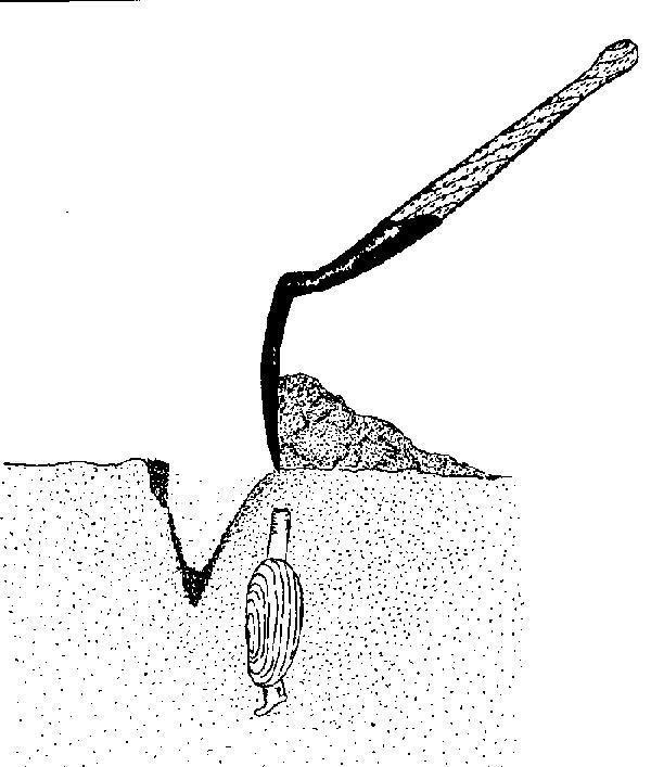 How to Dig Razor Clams | Washington Department of Fish & Wildlife ...