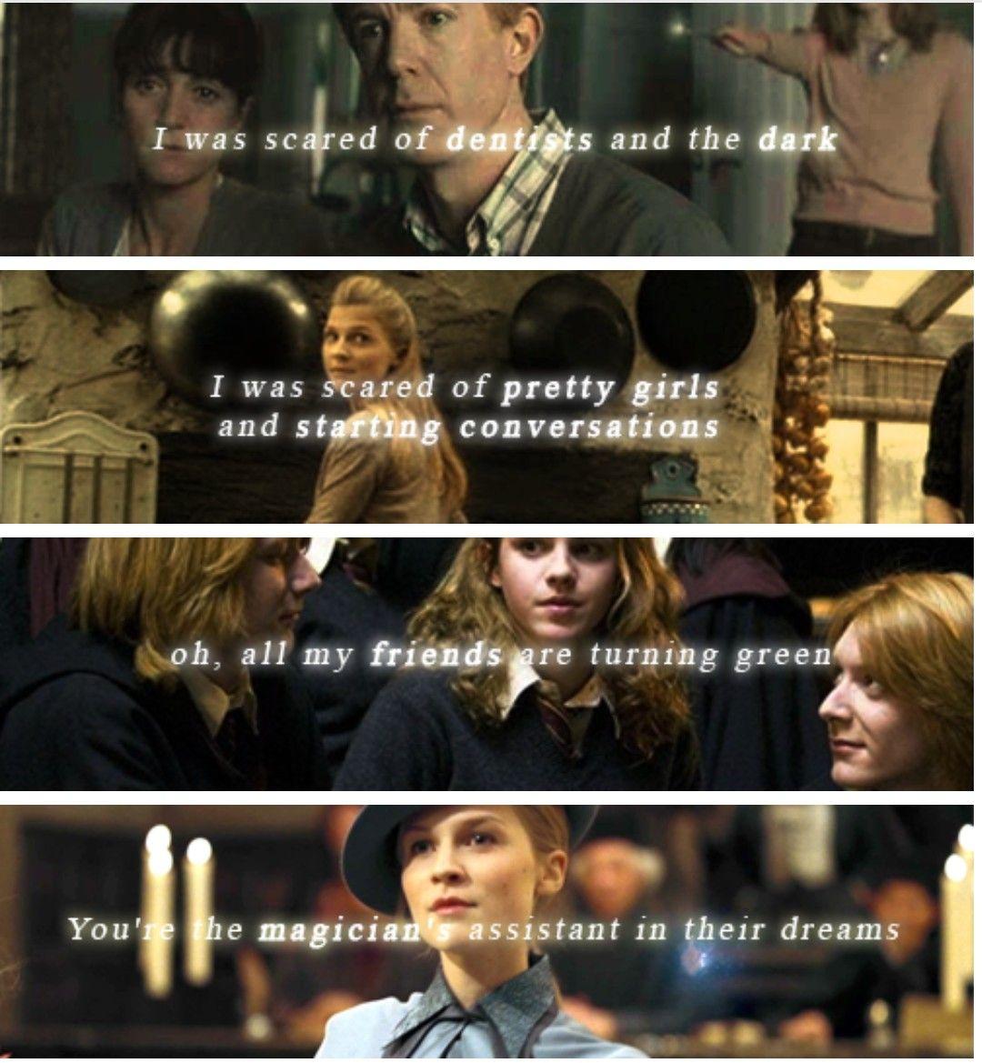 Fleurmione Fleur Delacour Hermione Granger Harry Potter Hp