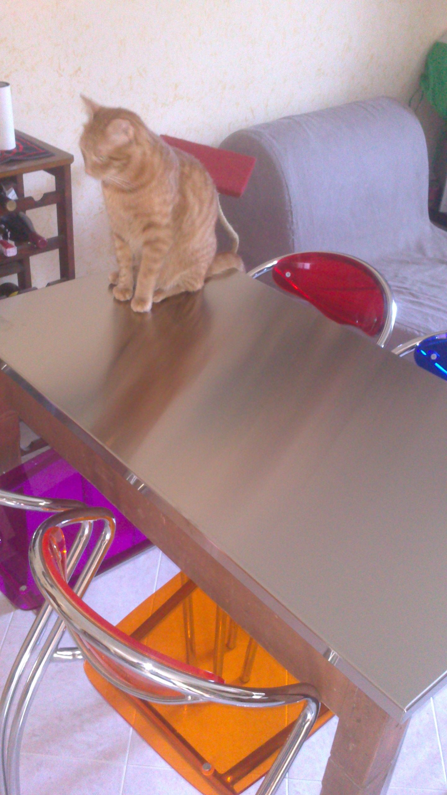 Rivestimento Tavolo ~ Il nuovo rivestimento del tavolo da pranzo me piace