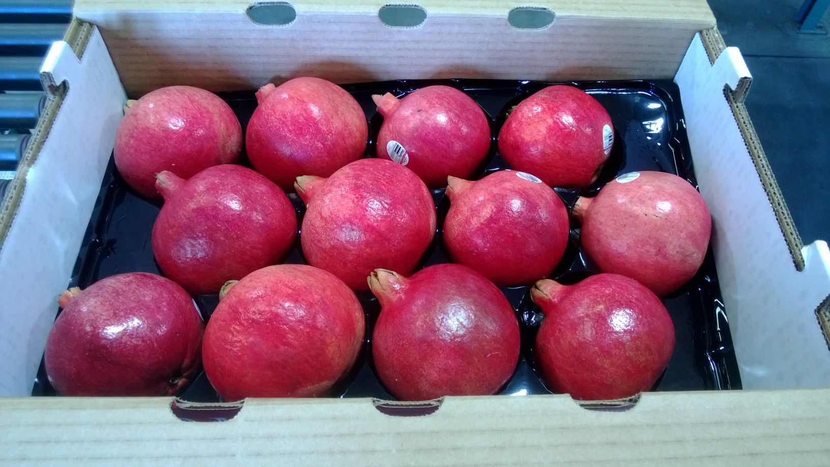 Wonderful variety pomegranates freshly harvested. They are being boxed for shipping to produce markets around the US.  http://rubyfresh.com/fresh-fruit/