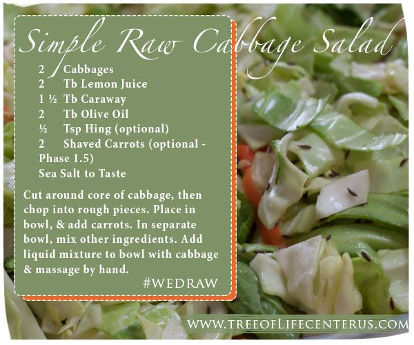 Simple diabeticfriendly raw cabbage salad whole food recipes food forumfinder Images