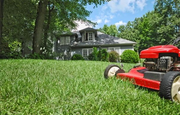 Everything You Need to Know to Grow a Lush Lawn is part of lawn Ideas Lush - Don't despair that spring has sprung and your turf isn't flourishing  Follow our advice to set your grass on the right path