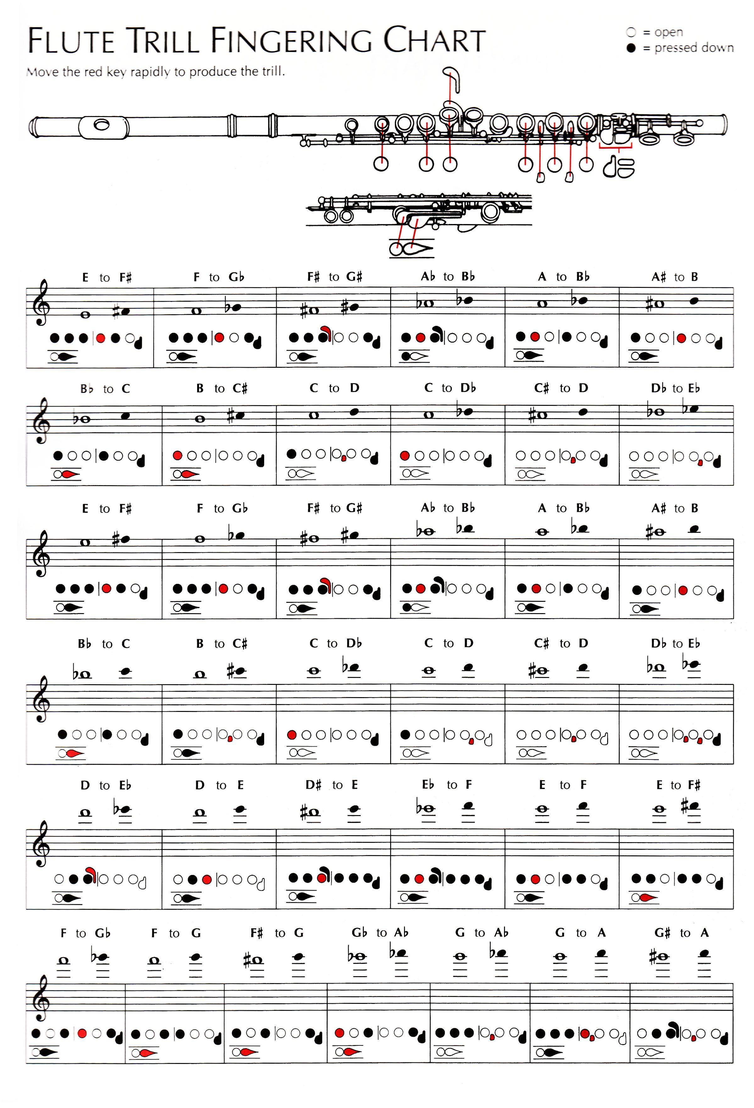 Flute Trill Fingering ChartJpg   Flute Music