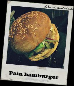 un pain hamburger d licieux tr s moelleux je peux vous grantir que vous garderez la recette. Black Bedroom Furniture Sets. Home Design Ideas