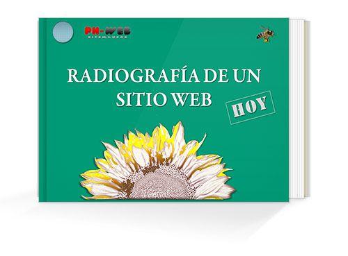 RADIOGRAFIA DE UN SITIO WEB  Las funciones y elementos de un sitio web efectivo -@ph-websitemakers #diseñoweb #webdesign