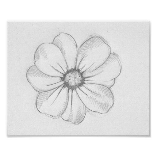 Flower Sketch Poster Zazzle Com Realistic Flower Drawing Flower Sketches Cute Flower Drawing