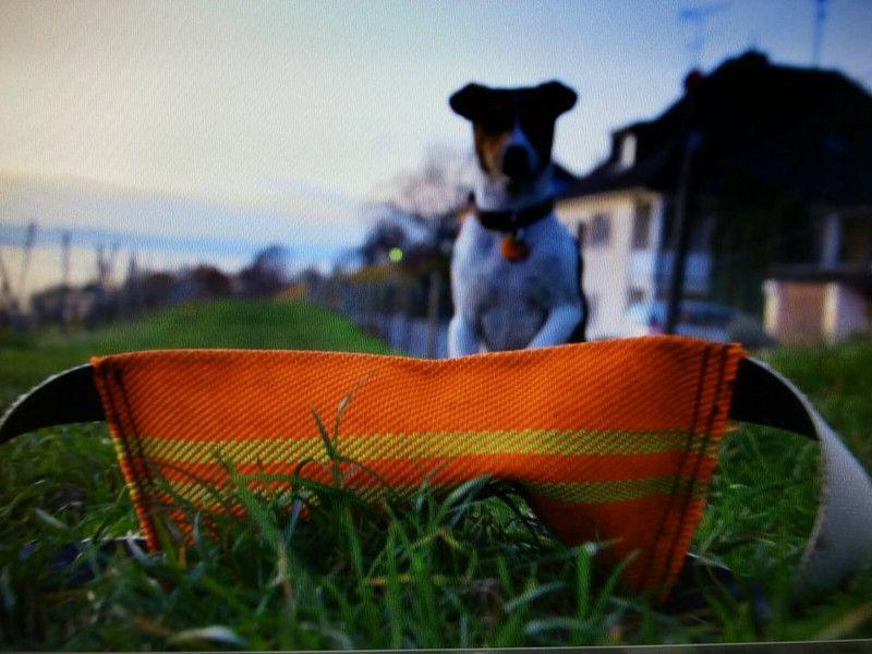 Dummy/Hunde Feuerwehrschlauch von LittleFashion auf