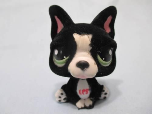 Littlest Pet Shop French Bulldog 978 Special Edition Lps 100