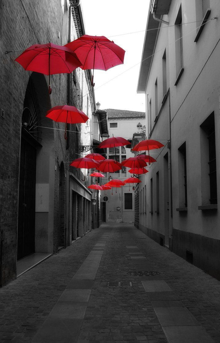 Splash of red splash red umbrella color splash black white