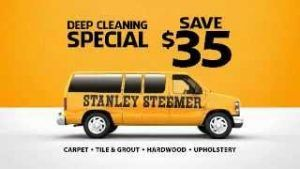 image regarding Stanley Steemer Coupons Printable identified as The Mom and the Perfect Stanley Steemer Coupon Codes