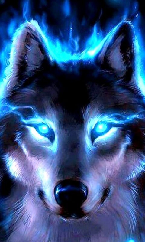 Girl Boss Desktop Wallpaper Glowing Wolf Wolfs In 2019 Wolf Wolf Pictures Wolf Love