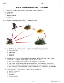 15+ Msrazz chemclass worksheet answers Information