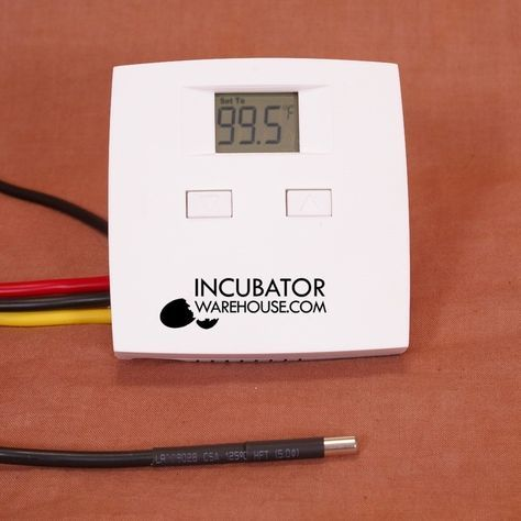 IncuStat™ Basic Digital Electronic Egg Incubator Thermostat