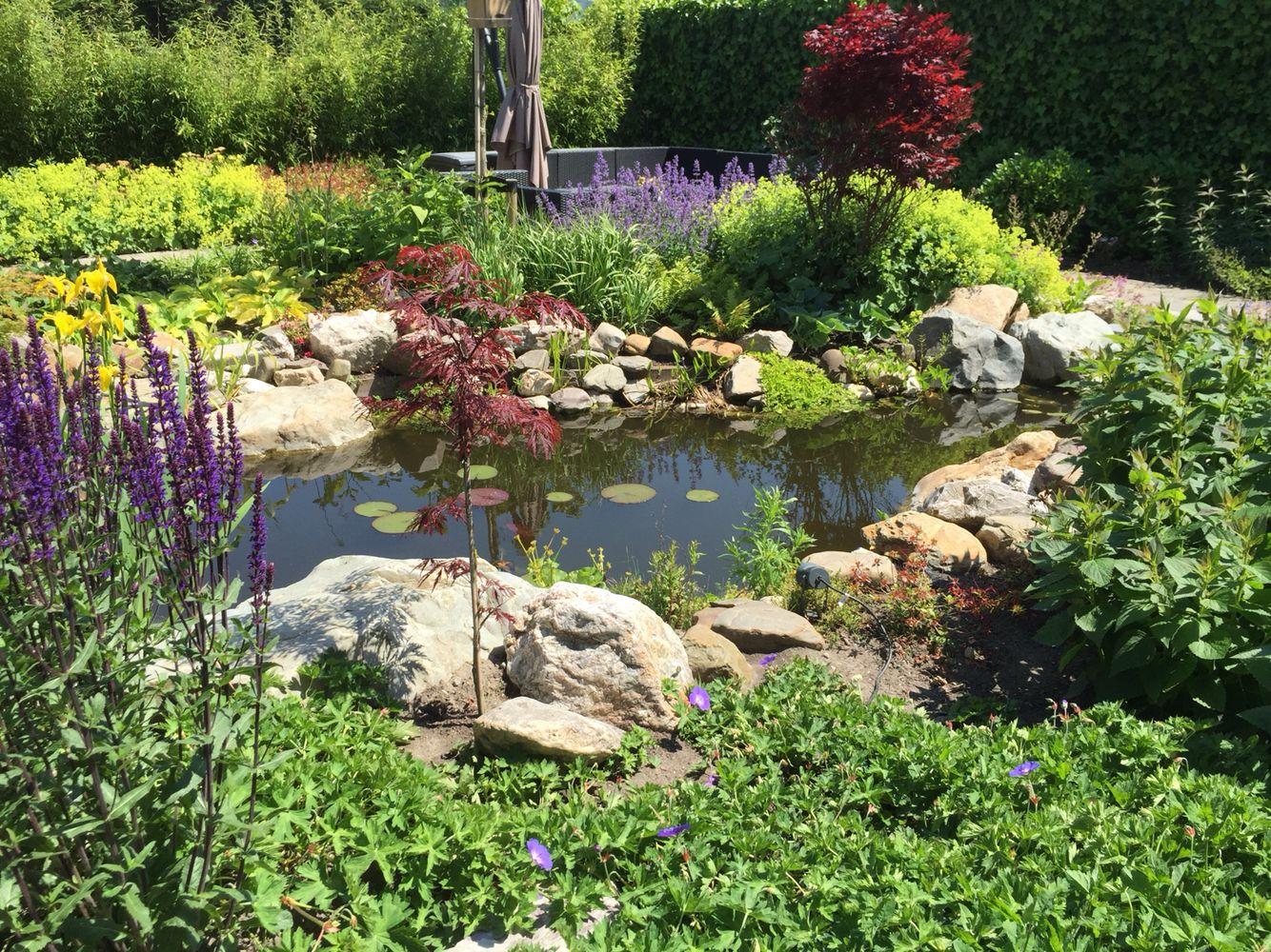 Diemelgroenvoorzieningen bloeiendetuin met natuurlijke for Vijverpomp voor grote vijver
